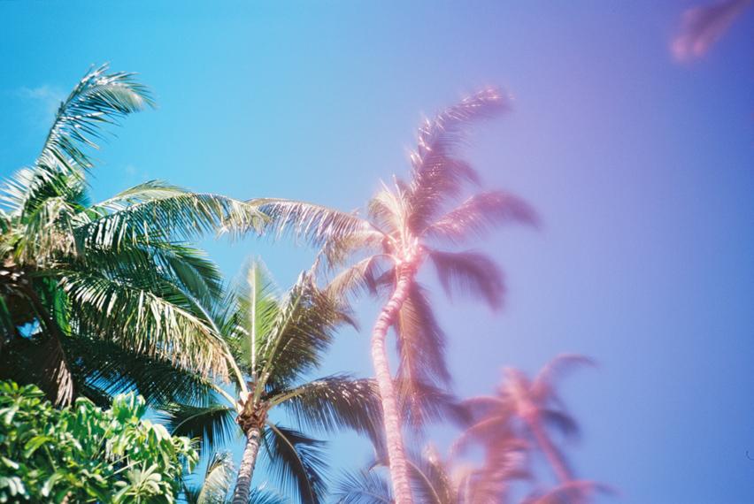 hawaii photographer wendy laurel surf lifestyle on maui-5