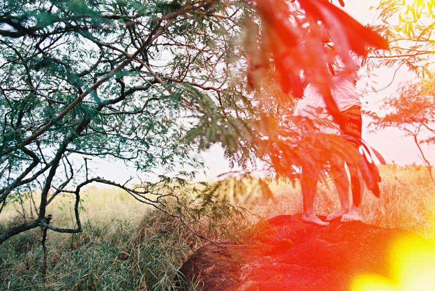 hawaii photographer wendy laurel-1