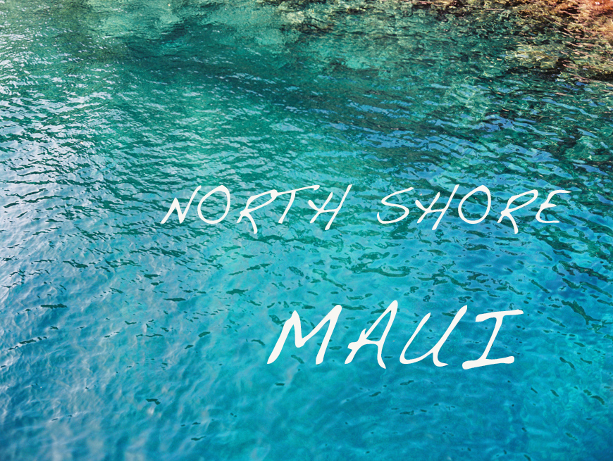 north shore maui images for snippet and ink by maui photographer wendy laurel-28